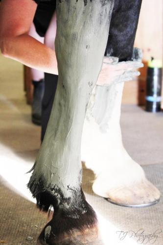 Reece-mud-legs-applying