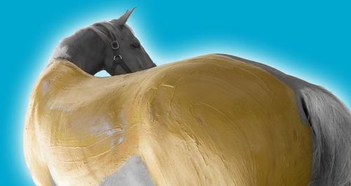 main-equithalasso-horse-wrap-image-blue-background