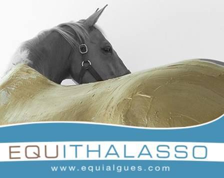 main-equithalasso-horse-wrap-image-with-logo