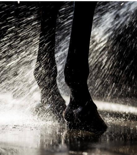 rinsing-legs
